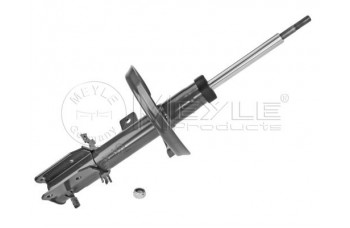 FRONT GAS STRUT N/S EURO E7 2007 on